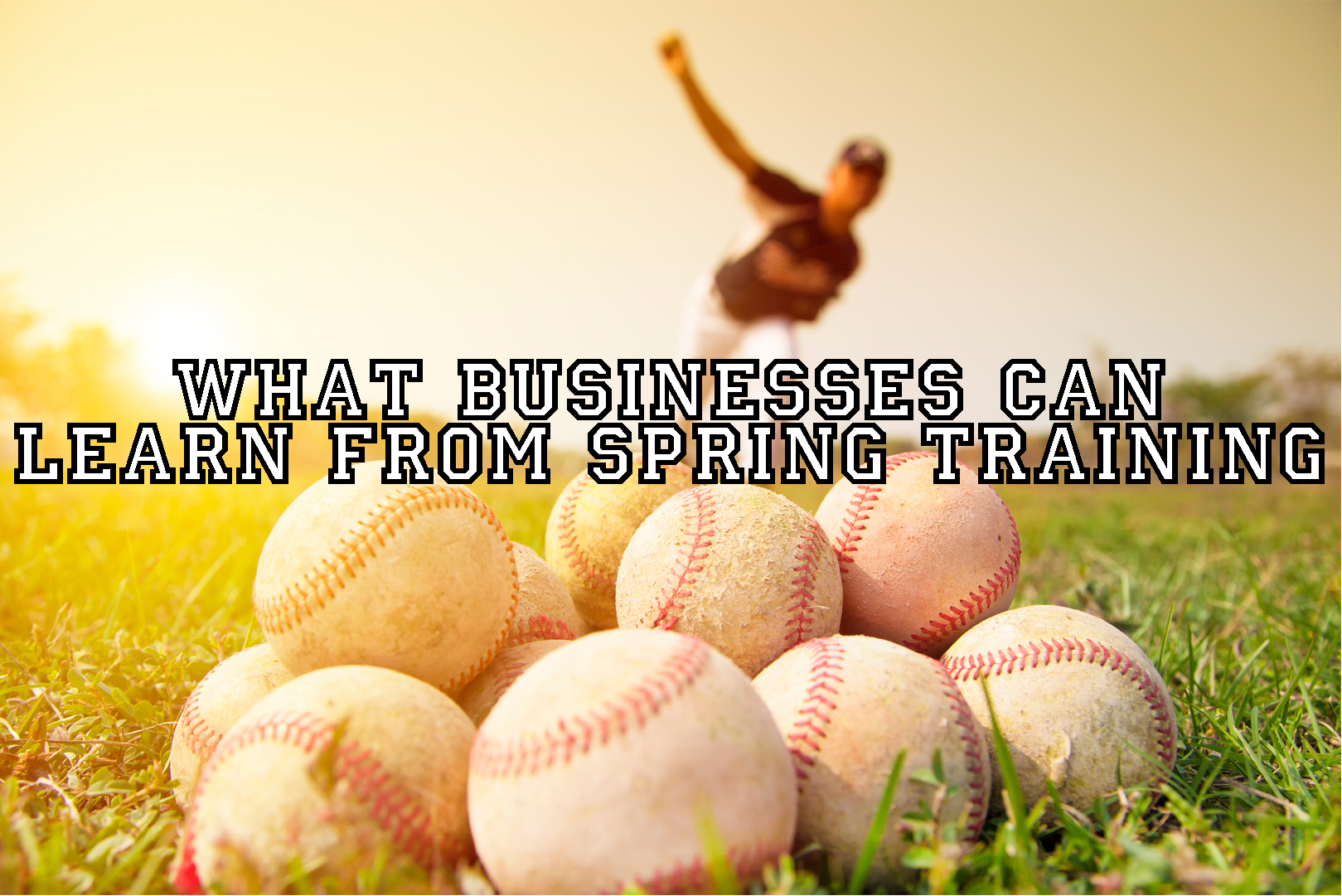 businesses-spring-training